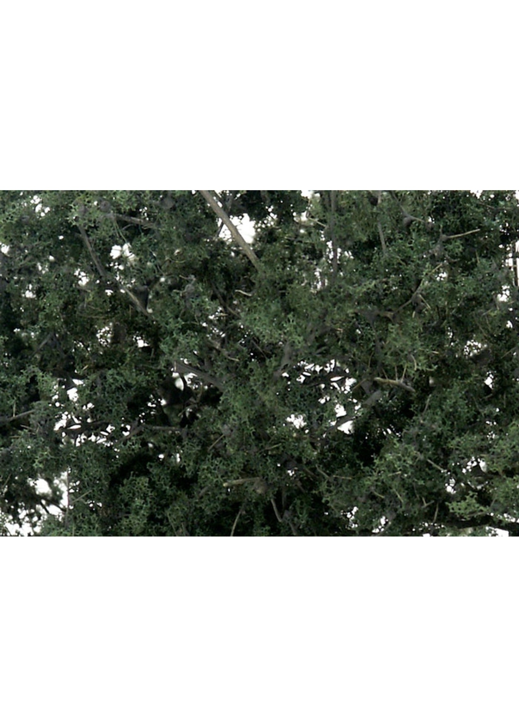 Fine Leaf Foliage, Dark Green/75 cu. in.