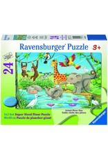 Puzzle: Waterhole Fun