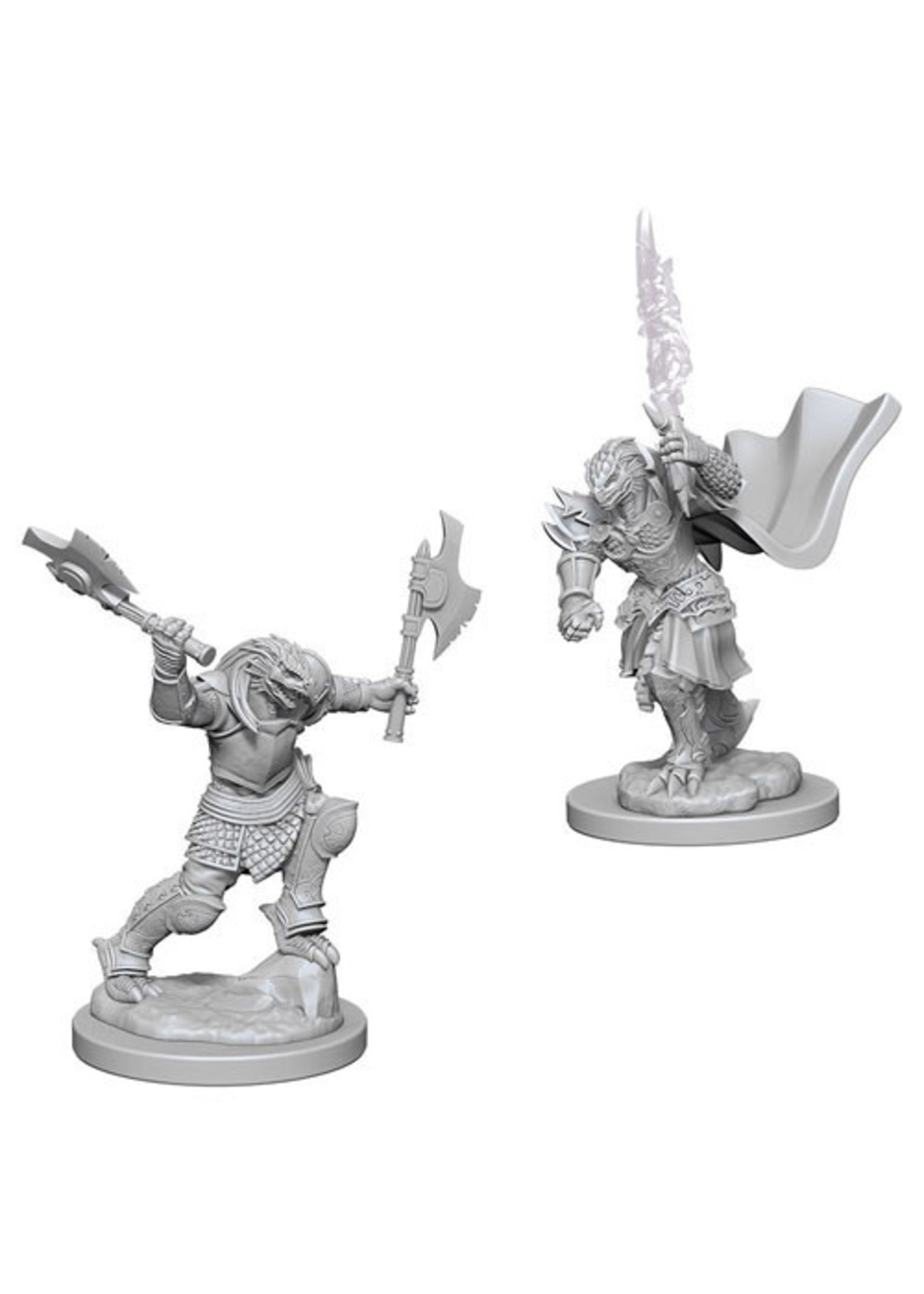 Dungeons & Dragons Nolzur`s Marvelous Unpainted Miniatures: W4 Dragonborn Female Fighter