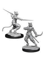 Dungeons & Dragons Nolzur`s Marvelous Unpainted Miniatures: W7 Tabaxi Male Rogue