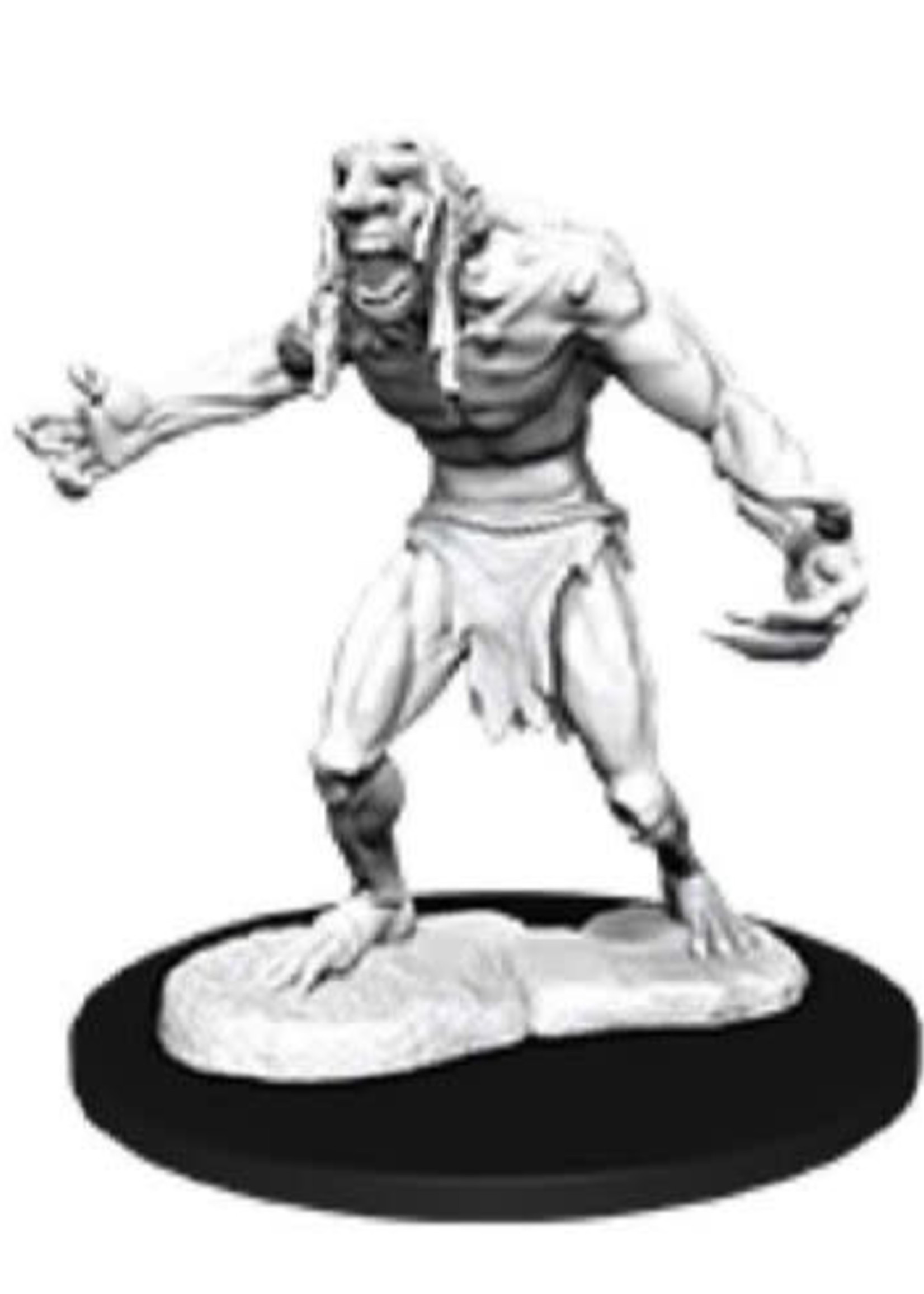 Dungeons & Dragons Nolzur`s Marvelous Unpainted Miniatures: W12 Raging Troll