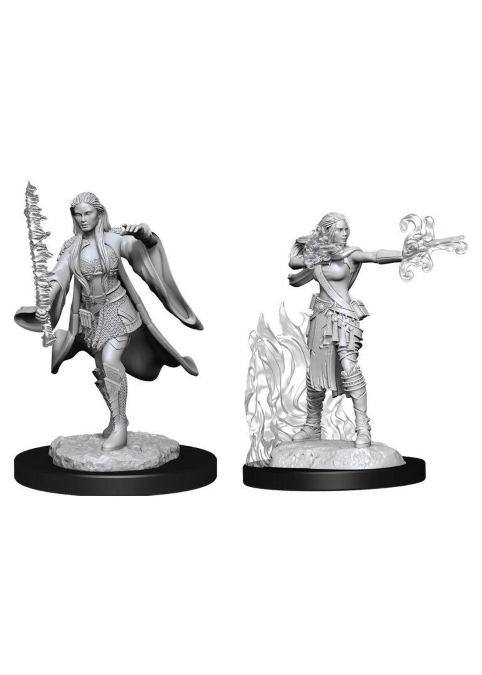 Dungeons & Dragons Nolzur`s Marvelous Unpainted Miniatures: W13 Multiclass Warlock + Sorcerer Female