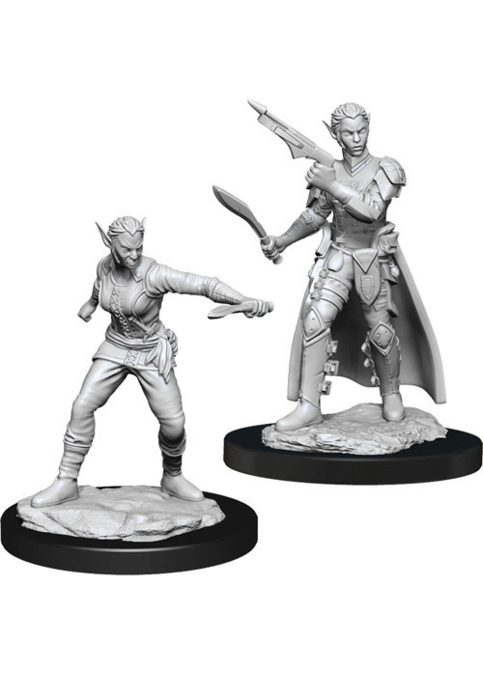 Dungeons & Dragons Nolzur`s Marvelous Unpainted Miniatures: W13 Shifter Rogue Female