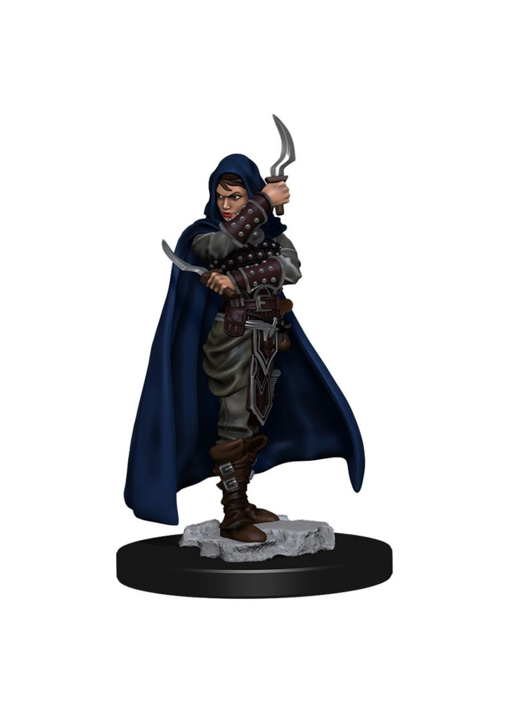 Pathfinder Battles: Premium Painted Figure - W1 Human Rogue Female