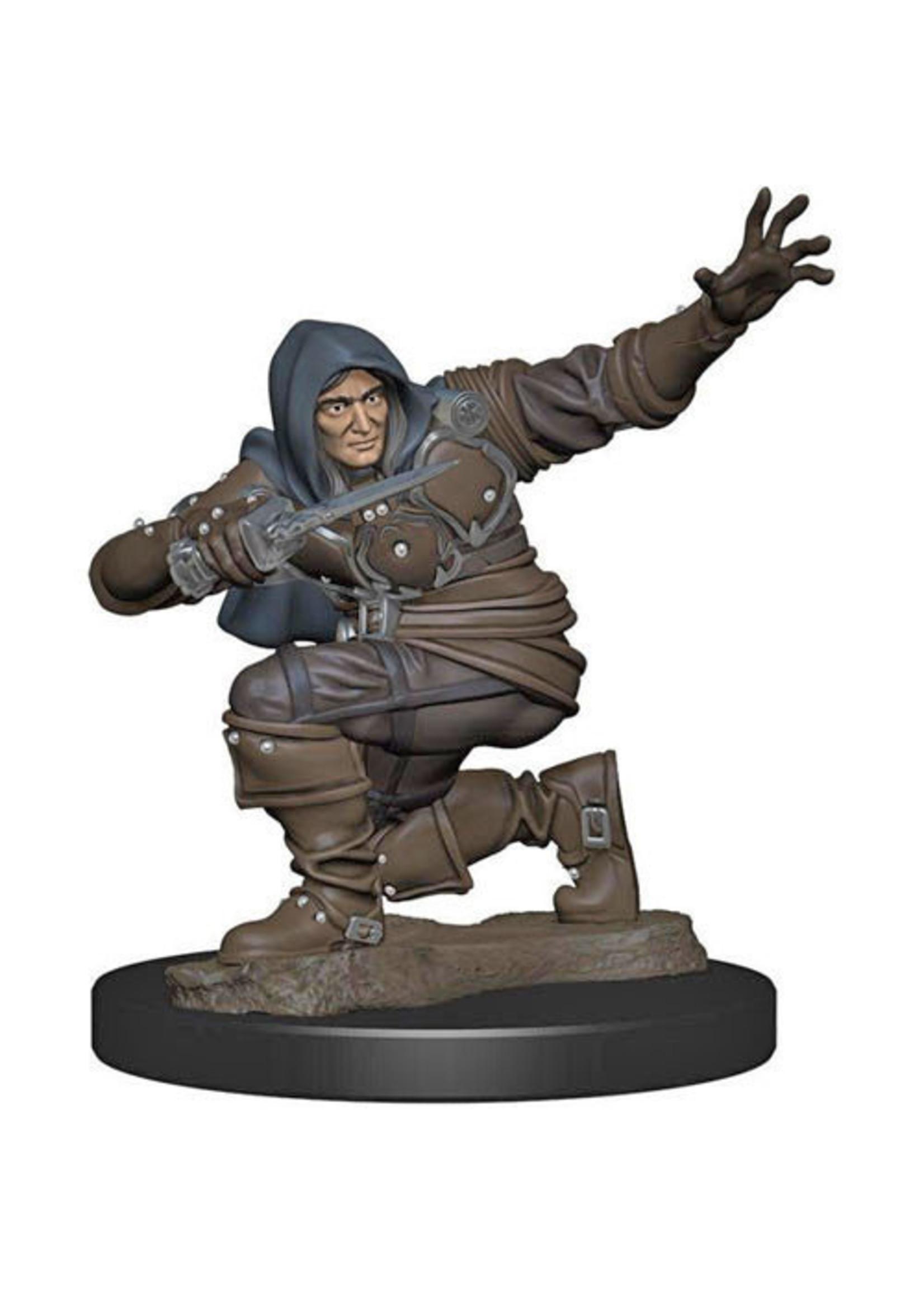 Pathfinder Battles: Premium Painted Figure - W1 Human Rogue Male