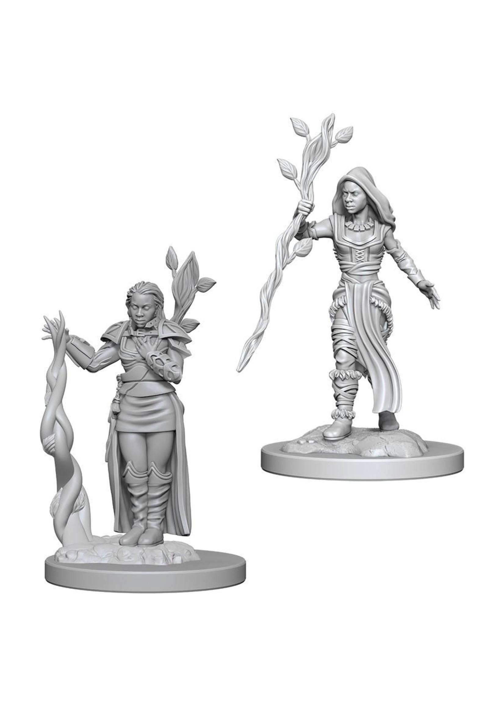 Dungeons & Dragons Nolzur`s Marvelous Unpainted Miniatures: W2 Human Female Druid