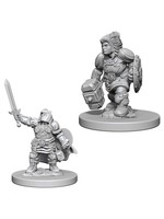 Dungeons & Dragons Nolzur`s Marvelous Unpainted Miniatures: W3 Dwarf Female Paladin