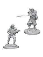 Dungeons & Dragons Nolzur`s Marvelous Unpainted Miniatures: W4 Human Male Bard