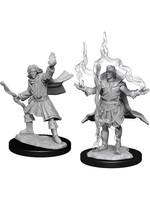Pathfinder Deep Cuts Unpainted Miniatures: W14 Elf Sorcerer Male