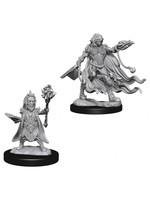Pathfinder Deep Cuts Unpainted Miniatures: W2 Evil Wizards