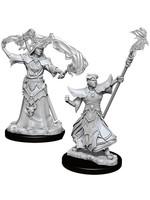 Pathfinder Deep Cuts Unpainted Miniatures: W11 Male Human Sorcerer