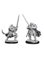 Dungeons & Dragons Nolzur`s Marvelous Unpainted Miniatures: W15 Half-Orc Paladin Male