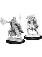 Dungeons & Dragons Nolzur`s Marvelous Unpainted Miniatures: W15 Winter Eladrin & Spring Eladrin