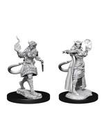 Dungeons & Dragons Nolzur`s Marvelous Unpainted Miniatures: W15 Tiefling Sorcerer Female