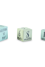 Mud Pie Blue Milestone Blocks
