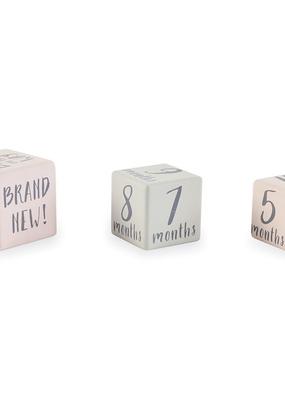 Mud Pie Pink Milestone Blocks