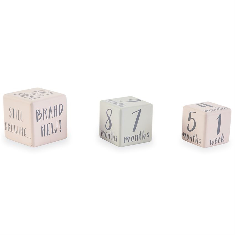 Mud Pie Pink Milestone Blocks