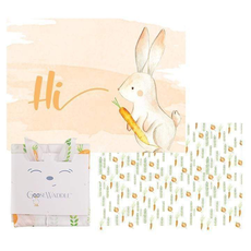 GooseWaddle GooseWaddle 2 PK Receiving Blanket Parsnip Bunny - Carrots