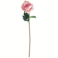 20 inch Pink Real Touch Peony Stem