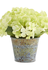 7 Inch Green Hydrangea in Tin Pot