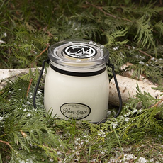 Milkhouse Candle Creamery Milkhouse Candle Creamery Butter Jar 16 oz:  Silver Birch