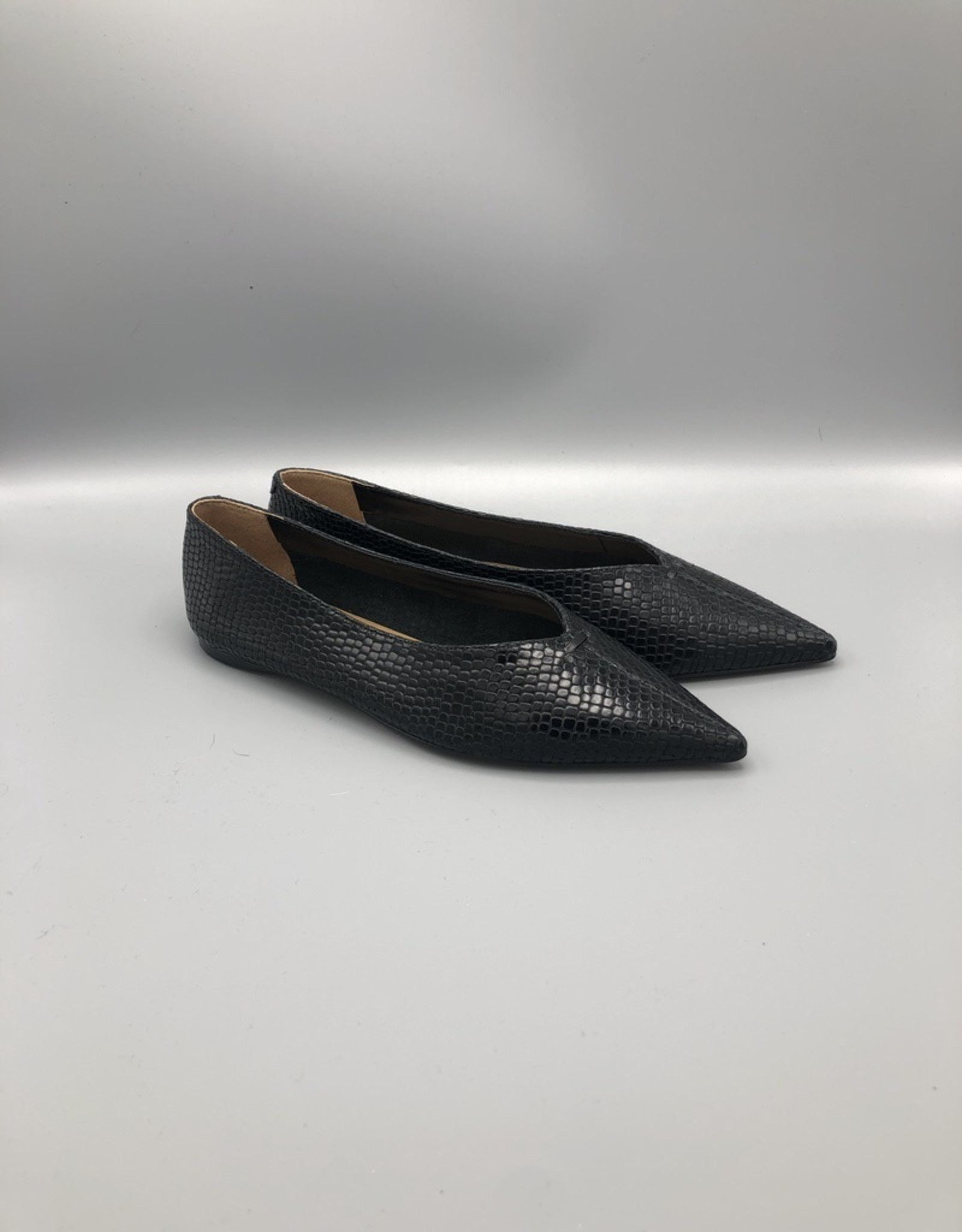 Carrano Viper Pointed Flat