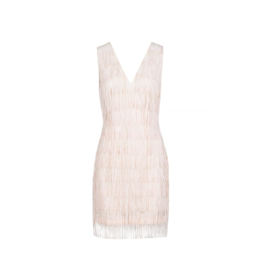 Anonyme Dundas V-Neck Feather Dress