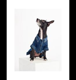 DL1961 Fido Canine Trucker Jacket