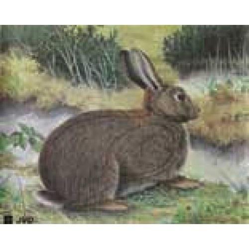 JVD JVD Animal Face Rabbit