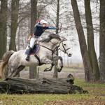 Horsebows