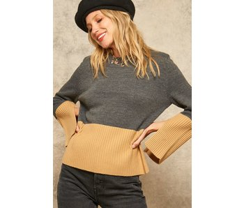 Promesa USA Colorblock crew neck sweater