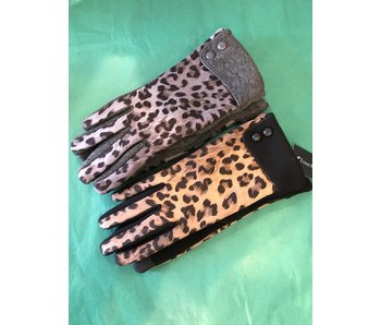 Mademoiselle E touch leopard print glove