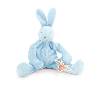 Bunnies by the Bay Bud Silly Buddy -pacifier holder