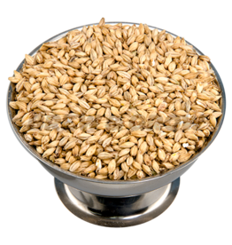 2-Row 50 Lb (Brewer's Malt)
