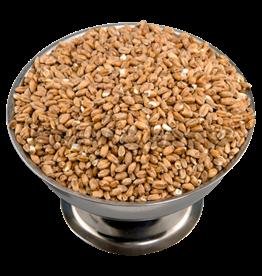 Wheat Briess 50 Lb