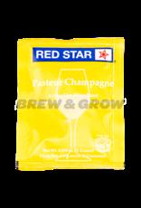 Premier Blanc Red Star Wine Yeast 5 gram