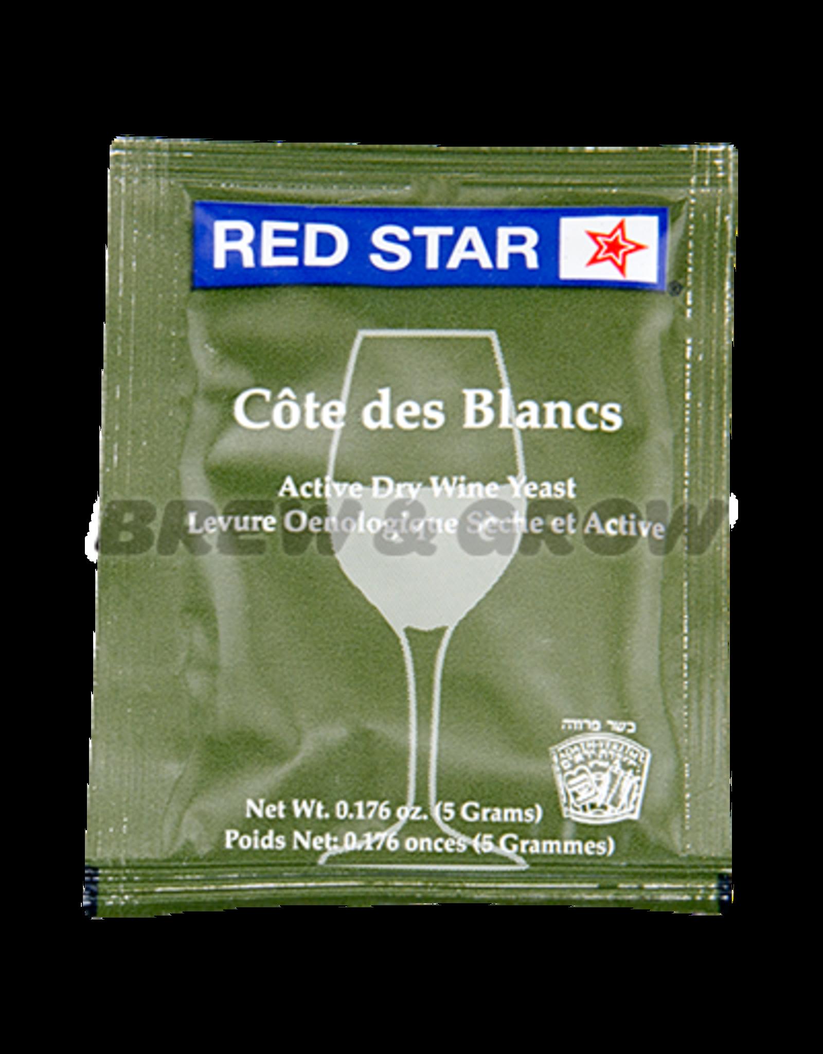 Cote Des Blanc Red Star Wine Yeast 5 gram