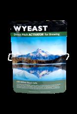 Wyeast Wyeast - Dry Mead Wine
