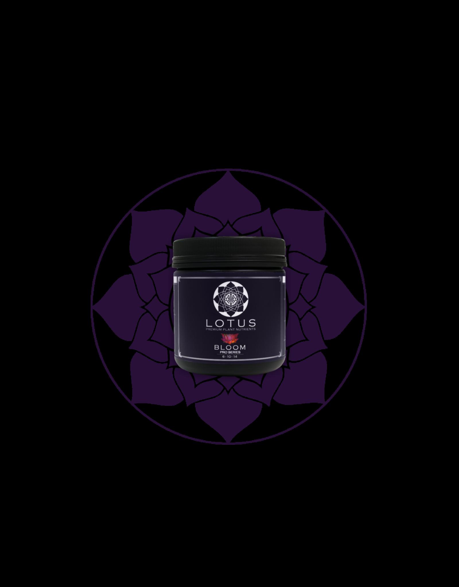 LOTUS Lotus Pro Series Bloom - 16 oz