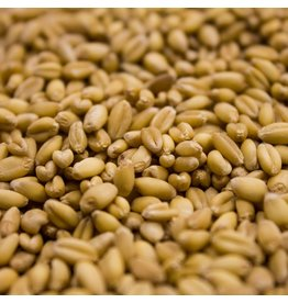 Unmalted Wheat Rahr  Oz