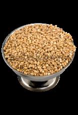 White Wheat 50 Lb