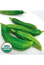 Seed Savers Cucumber - Parisian Pickling