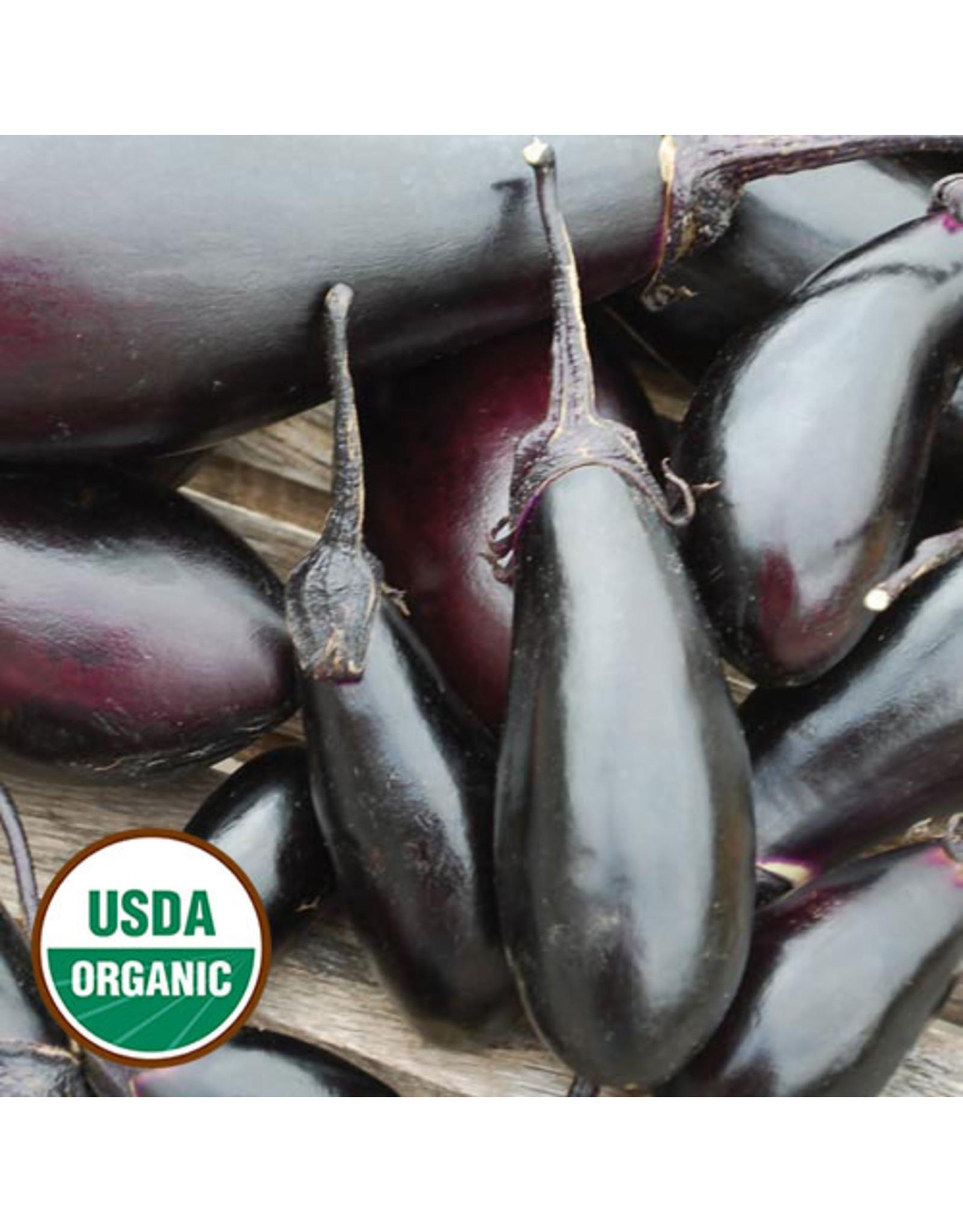Seed Savers Eggplant - Purple Pickling