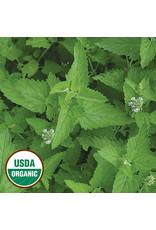 Seed Savers Herb - Catnip