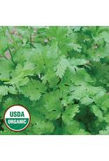 Seed Savers Herb - Cilantro