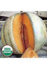 Seed Savers Melon - Charentais