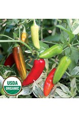 Seed Savers Pepper - Fish