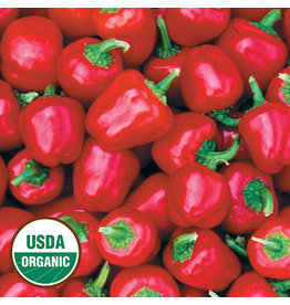 Seed Savers Pepper - Miniature Red Bell