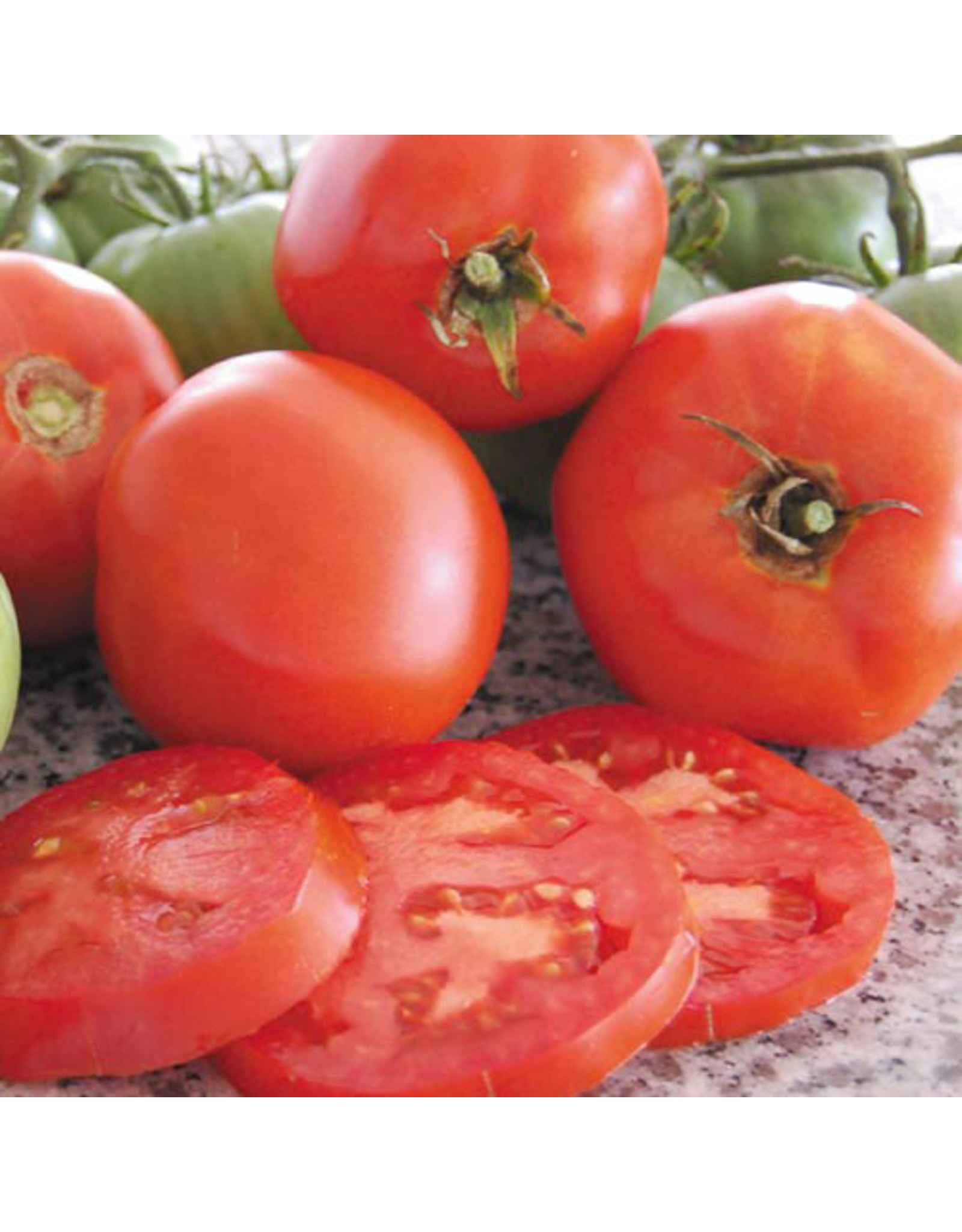 Seed Savers Tomato - Brandywine