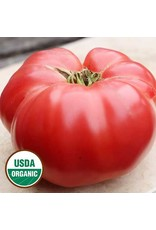 Seed Savers Tomato - German Pink